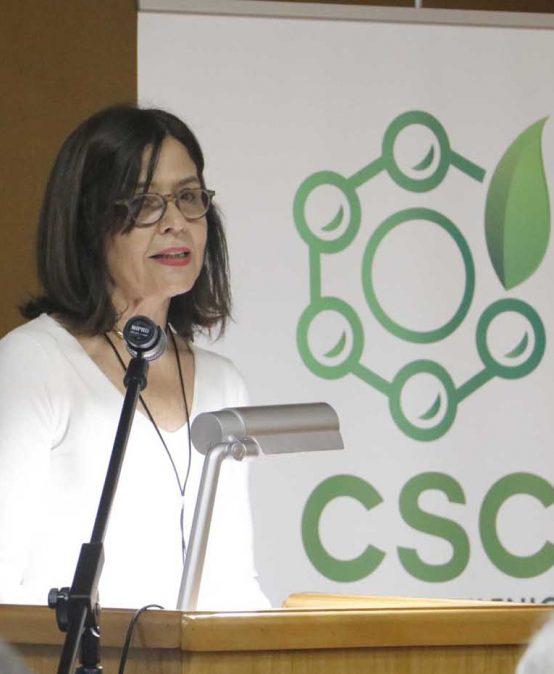 Académicos UdeC lanzan Núcleo Milenio CSC