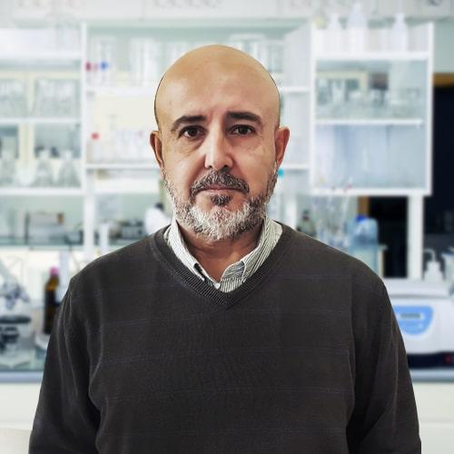 Dr Luis Basáez Ramírez