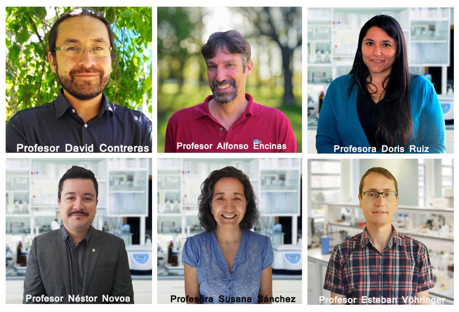 Seis académicos de la Facultad de Ciencias Químicas UdeC adjudicaron Proyecto Fondecyt Regular
